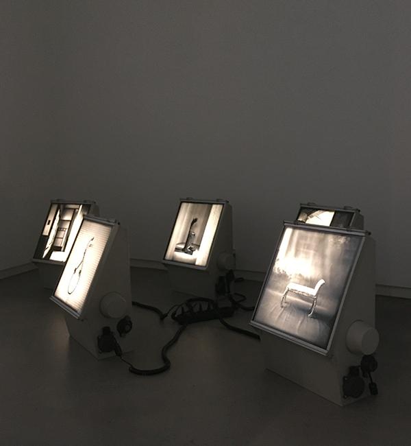 Galeria das Salgadeiras. 2019